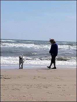 -asher-beach-jpg