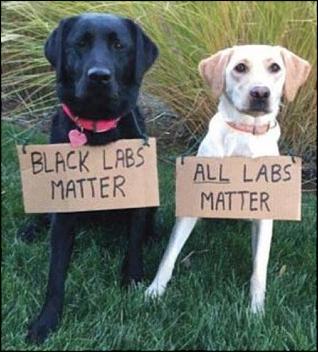 -black-labs-matter-jpg