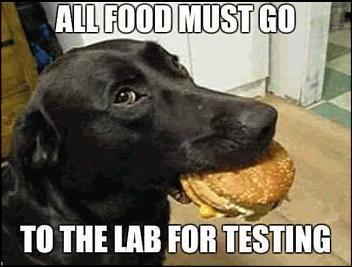 -food-lab-testing-jpg