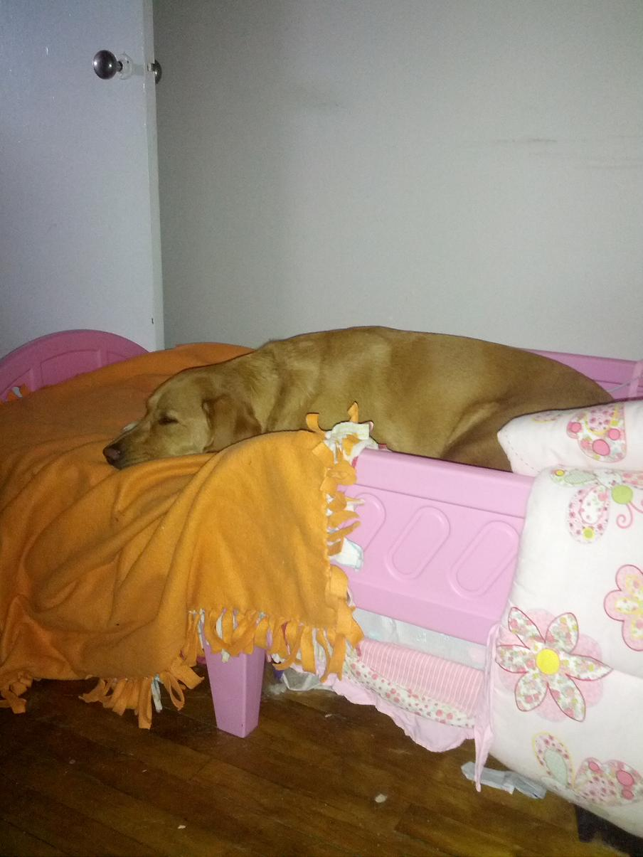 Sleeping in her big girl bed :)